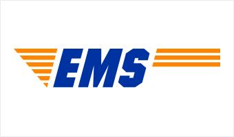 EMS logo big