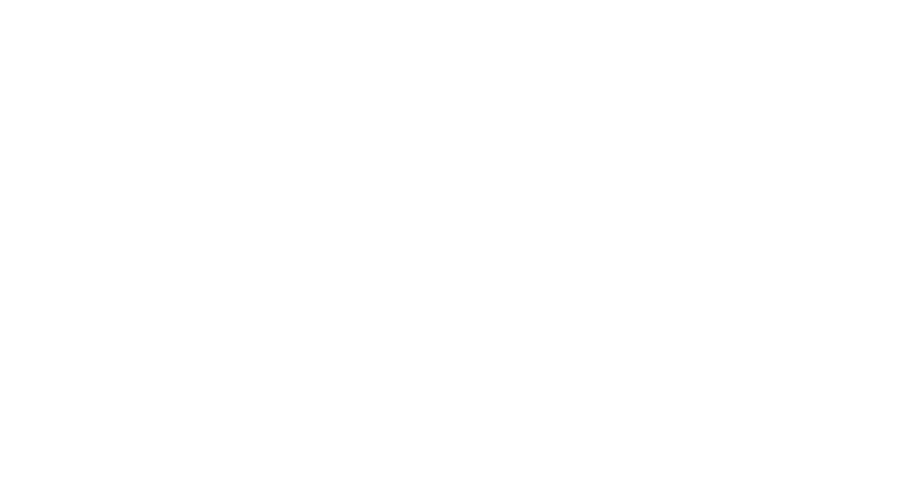 международные грузоперевозки / TBN company